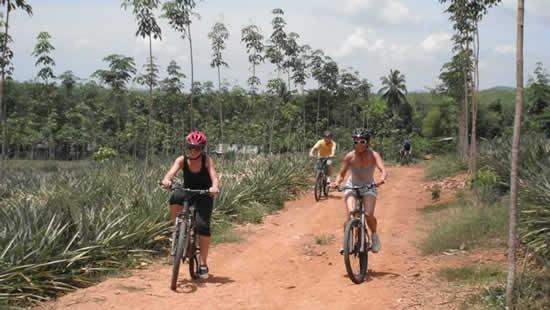 Koh Samui escursioni - In Bicicletta