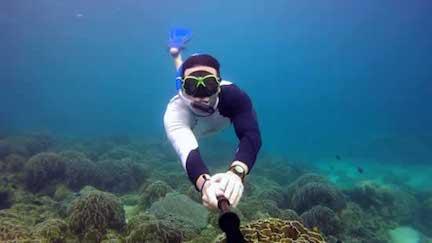 Koh Samui escursioni - Snorkeling