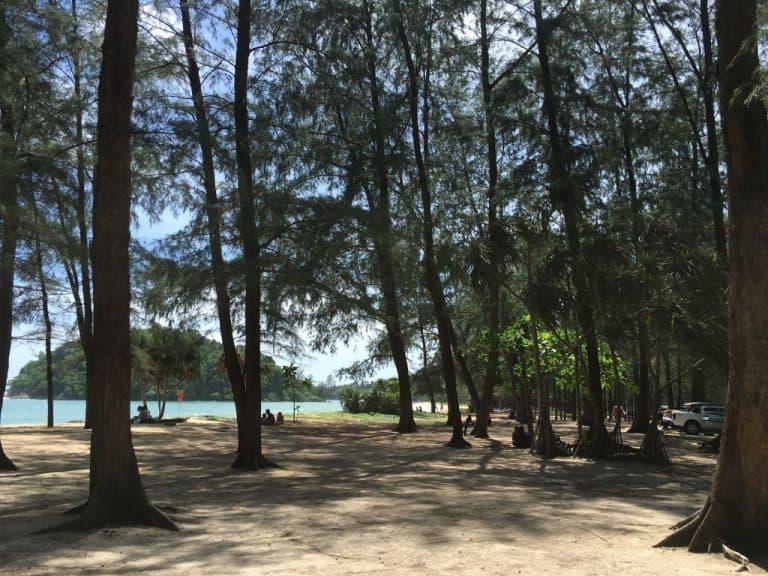 Pineta a Layan Beach