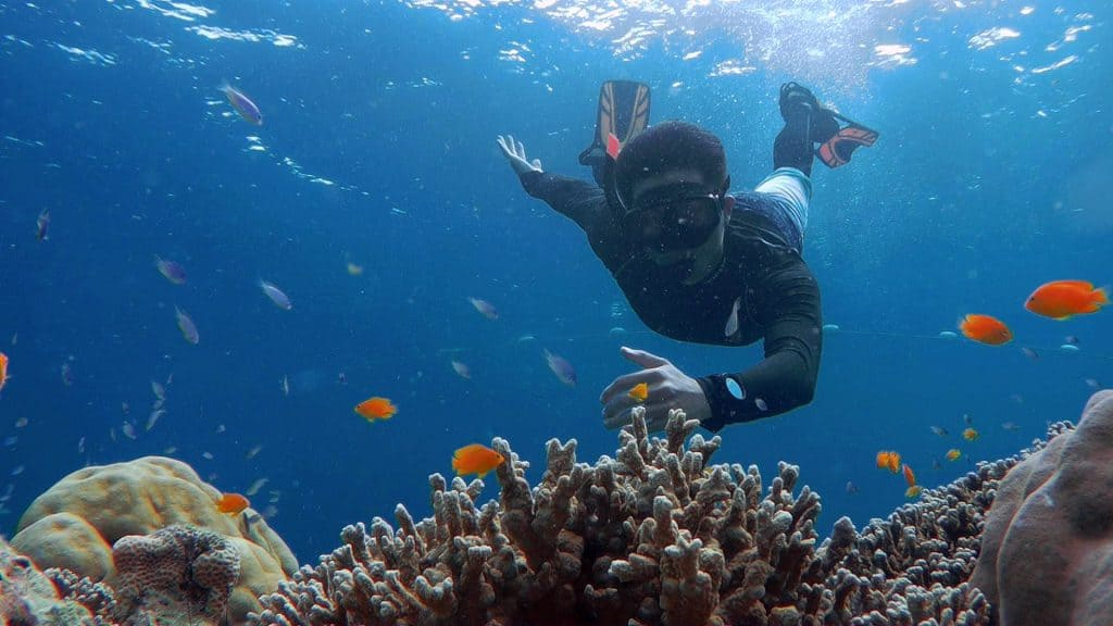 Phuket snorkeling alle isole Surin